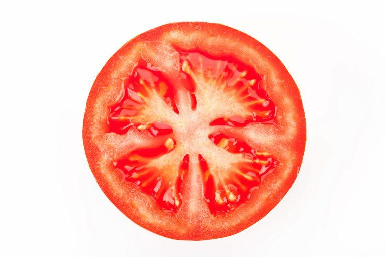 トマトの断面を図解で解説 自由研究のテーマにも使えます